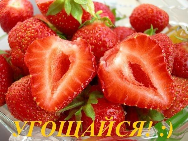 http://cs303212.vkontakte.ru/u8977104/-5/x_bbb93695.jpg